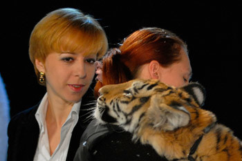 Телеведущая Марианна Максимовская в компании тигров