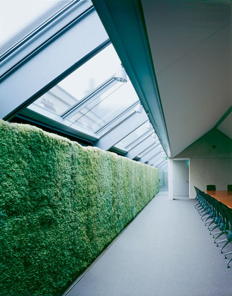 Конференц-зал штаб-квартиры HypoVereinsbank, компания Indoor-landscaping Gmbh, Мюнхен, 2005.
