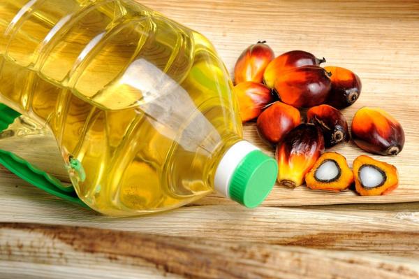 Польза пальмового жира