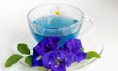 Синий чай из Таиланда: как правильно пить