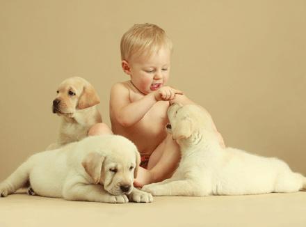 Ребенок и три щенка