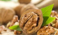 Уникальные свойства грецкого ореха