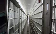 В Америке состоялась первая в 2011 году казнь