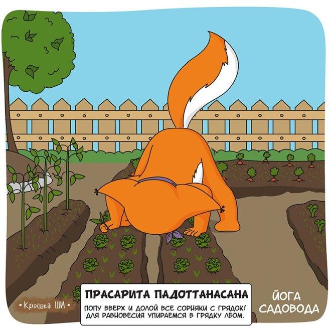 Крошка Ши: йога садовода