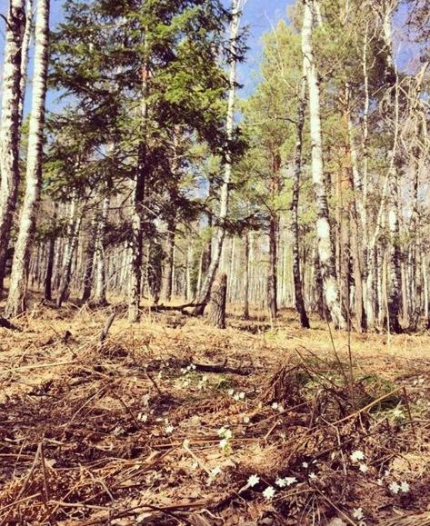 Сурганова в Красноярском заповеднике «Столбы»