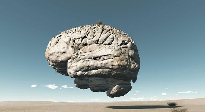 Придуманный мозг