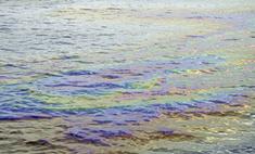 Нефтяное пятно в Мексиканском заливе увеличилось в три раза