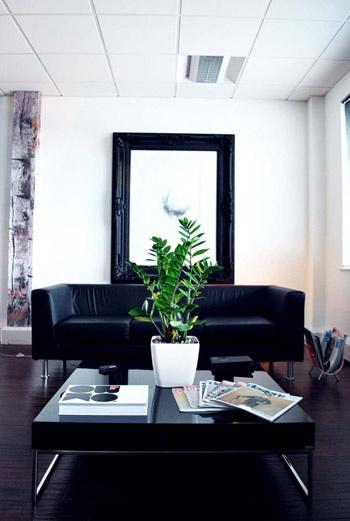 Неприхотливые и нецветущие растения – лучшее решение для рабочего пространства.