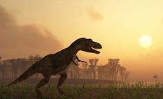 Древние люди жили в одно время с динозаврами