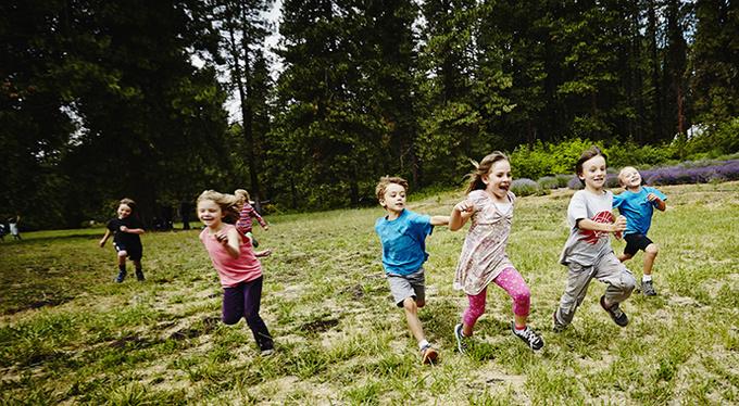 Детский лагерь: жить в стае