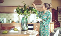 Комнатные растения, которые помогут пережить сезон простуд