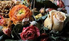 Способы, как правильно засушить розы