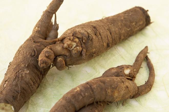 Как заваривать корень лопуха?
