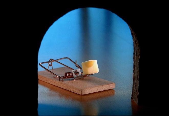 средство от мышей в квартире
