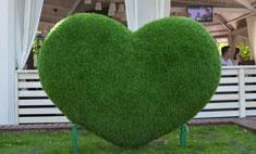 Интересное в Саратове: генератор тумана и зеленое сердце
