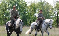 На юге Москвы 75-летнюю женщину сбили милицейские кони