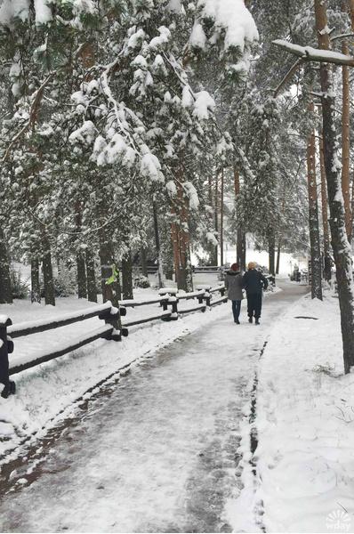Златибор зимой