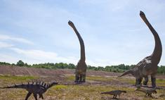 Динозавров погубил дождь из метеоритов