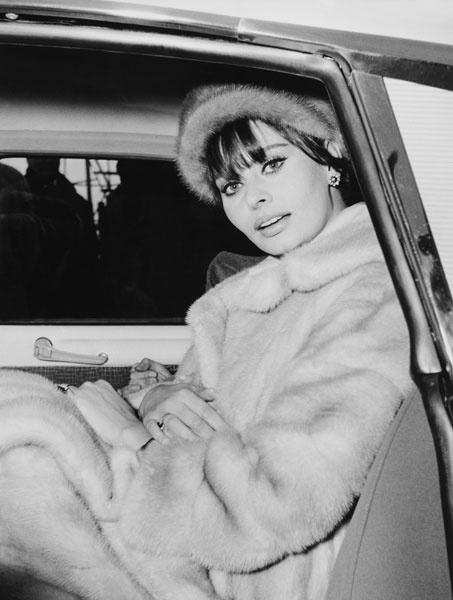 Софи Лорен, 1962 год