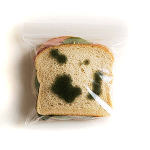 Набор пакетов для бутербродов «Не укради!»