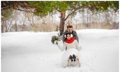 Семь липецких пар поженятся в последний день 2015 года