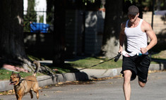 Келлан Латц соскучился по своим собакам