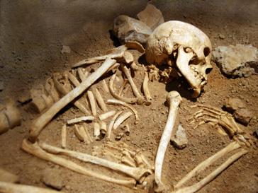 Кости семьи Аракчеевых нашли в 1999 году