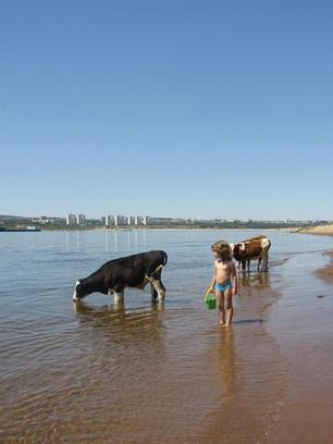 волгоград пляжи, открытие купального сезона 2015