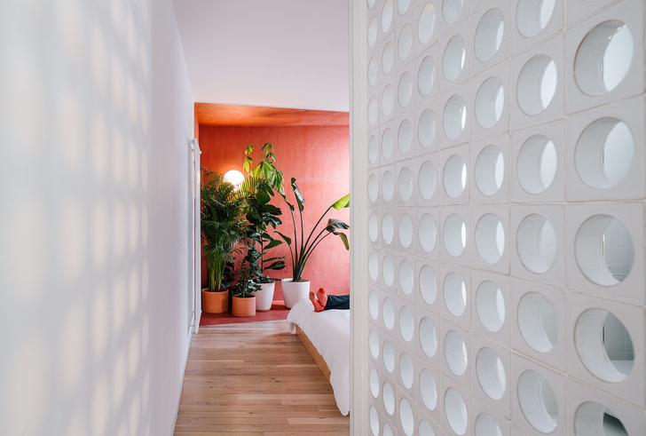 Фото №6 - Яркая квартира в Мадриде
