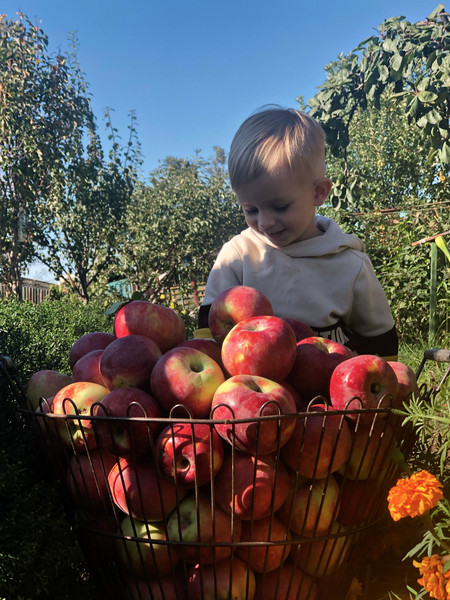 Фото №15 - Детский фотоконкурс «Готовимся к осени»: голосуем за лучшие кадры