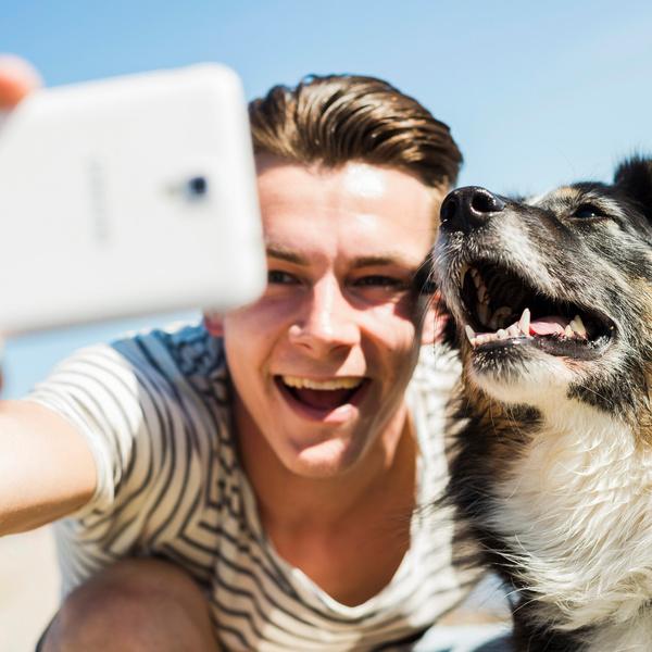Фото №1 - Домашние животные парня: что они расскажут о своем хозяине?