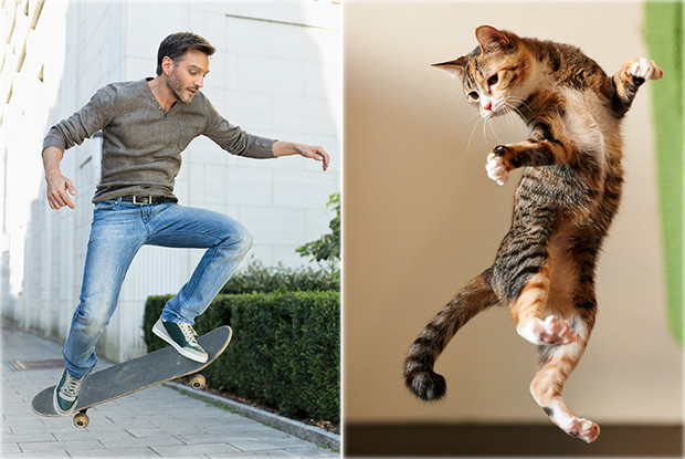 Мужчина или котик?