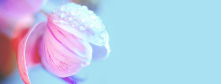 Фото №2 - Неприятный интимный запах: причины, лечение и когда бежать к врачу
