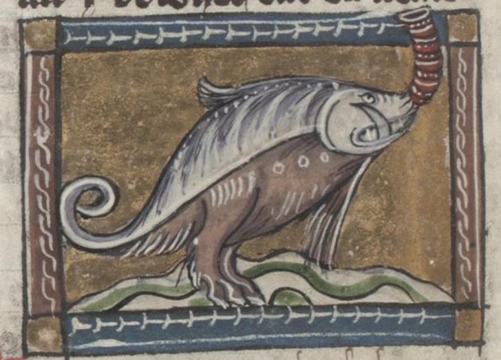 Фото №13 - Как в старину художники изображали животных, которых никогда не видели (25 странных существ)