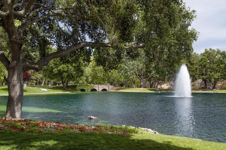 Фото №5 - Ранчо Neverland Майкла Джексона продано за 22 млн долларов
