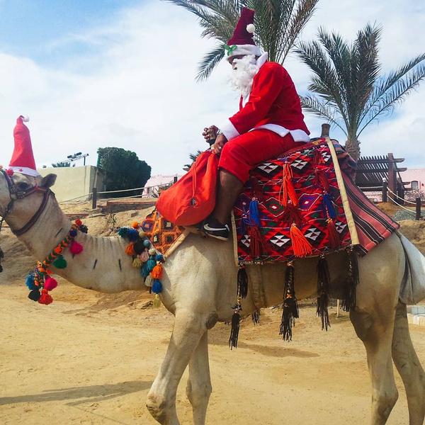 Фото №14 - Замужем за египтянином: «Мама думала, меня завербовали»