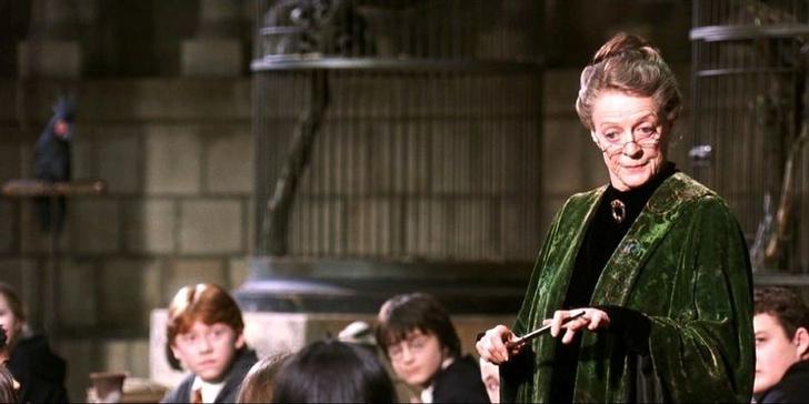 Фото №6 - «Хогвартс. Наследие»: 10 самых интересных фактов о новой игре по вселенной «Гарри Поттера» ✨