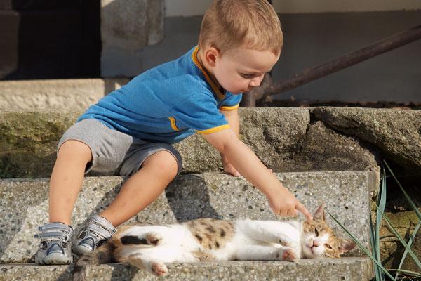 Фото №1 - Не дергай кота за хвост: как дети учатся общаться с живым миром