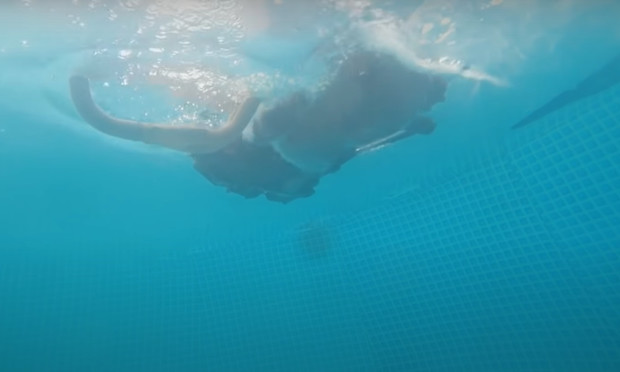 Фото №1 - Русские мужики провели опыт: будет ли движок автомобиля работать под водой (видео)