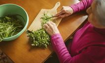 Рецепт салата из петрушки