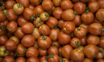 Как заготовить помидоры в мультиварке на зиму