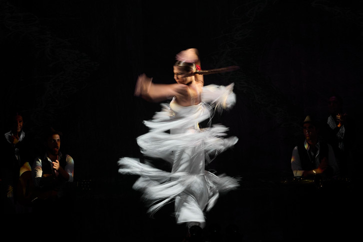 Фото №1 - Магия фламенко
