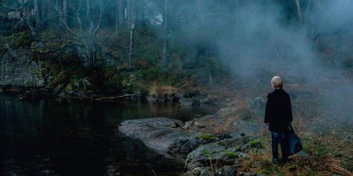 Фото №11 - Тролли, викинги и Рагнарёк: топ-10 самых страшных фильмов про скандинавских монстров