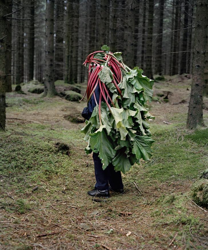 Фото №3 - Фольклор, любопытство и возвращение к природе: интервью с Рииттой Иконен
