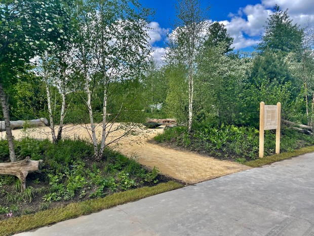 Фото №3 - Рядом с музеем Гараж открылся сад для медитаций