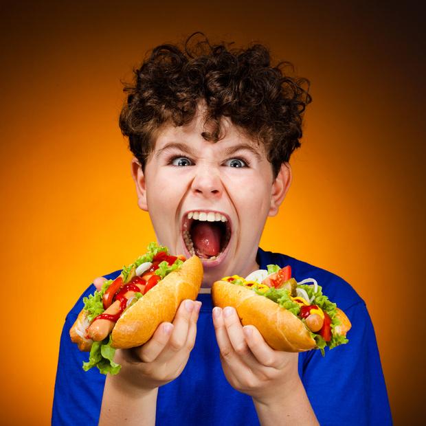Фото №1 - Многие родители скрывают факт, что кормят детей фаст-фудом