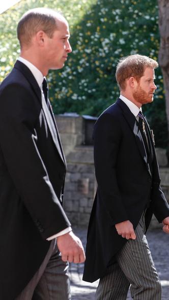 Фото №6 - Напряжение и прощение: о чем говорит язык тела Гарри и Уильяма на похоронах принца Филиппа