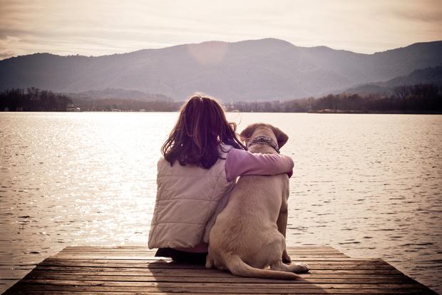 Фото №3 - Купите мне собаку!