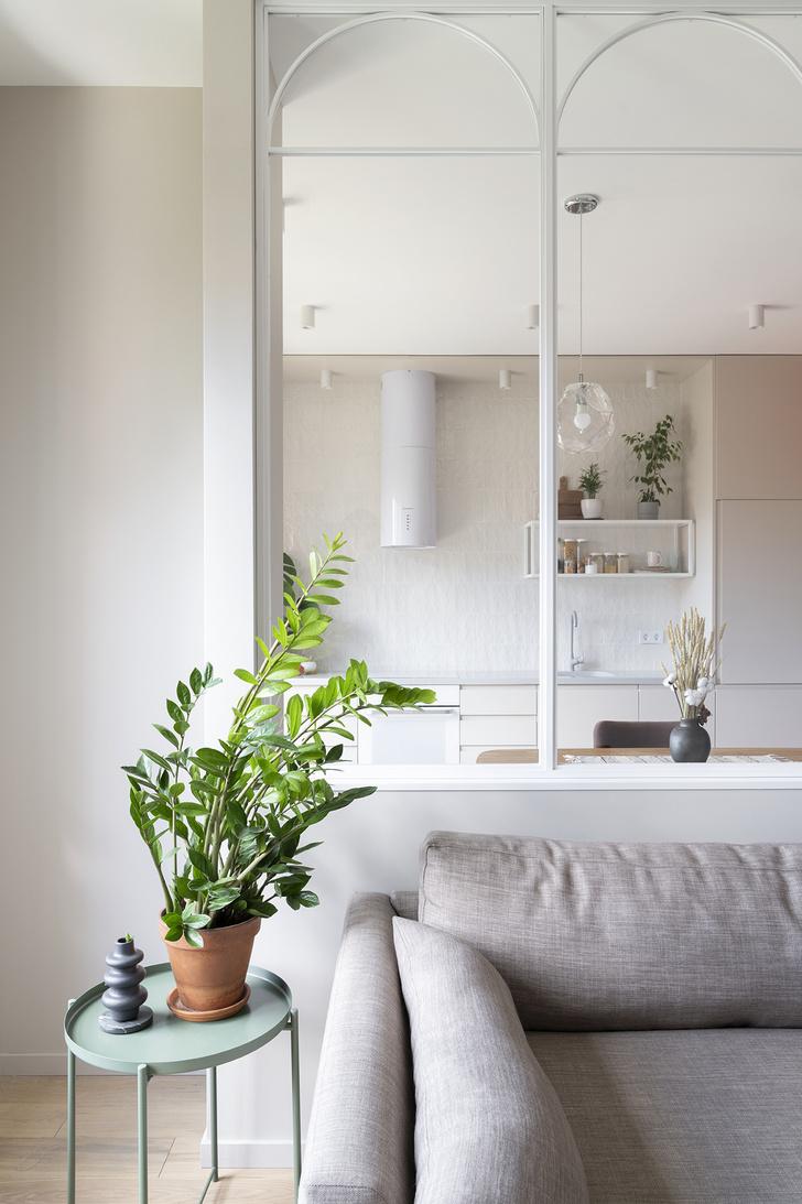 Фото №3 - Как правильно поливать комнатные растения: 5 советов