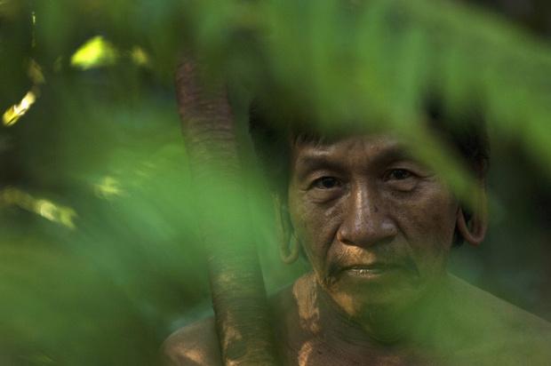 Фото №5 - «Трудная вода»: все что надо знать об аяуаске и почему ее стоит опасаться